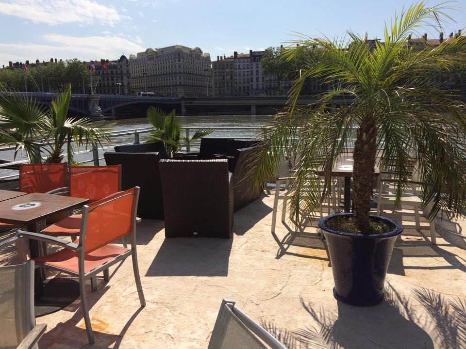 la barge terrasse palmier